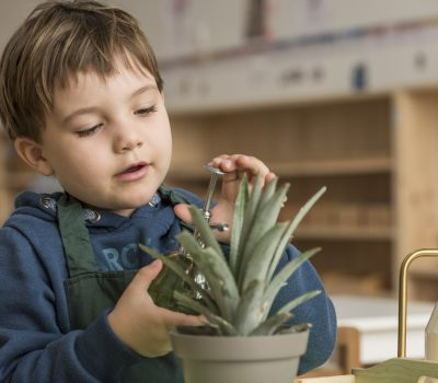 politique tarifaire - Montessori 21